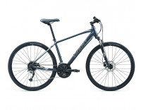 Giant Roam 2 Disc Bike (2019) Charcoal