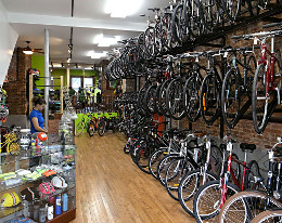 Bicycle Roots Interior