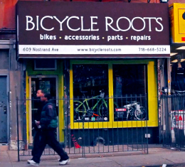 Bicycle Roots Storefront
